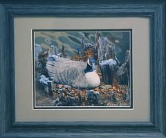 Framed Goose Anticipation LQ (Photo Hunt R) Tags: bird nature michael geese michigan wildlife canadian goose nesting witer gander photohuntr midlandcameraclub mcc2013 mcccncphotodisplay