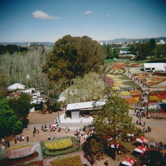 Floriadescape (sonofwalrus) Tags: flowers trees people film festival gardens holga lomo lomography hats australia scan canberra floriade hpc5380