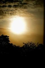 (ScreamingSoul) Tags: morning trees light sky orange sun mist hot clouds sunrise dawn scotland day bright galashiels