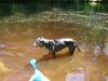 07-01-2012GreatBrookFarm007