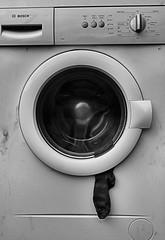 Escape ! (Explored) (CJS*64) Tags: old bw broken monochrome mono blackwhite nikon sock going gone goodbye nikkor washing j2 washer cjs whiteblack nikkorlens disgarded nikon1 craigsunter cjs64