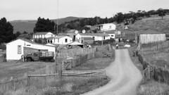 Village (Daniel Coitio) Tags: ranch village path hedge rim
