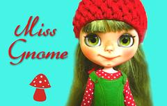 FA: Miss Gnome