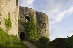 Burg Dorneck in Dornach (Basel101) Tags: schweiz ruine solothurn burg mittelalter dornach fotolia nordwestschweiz