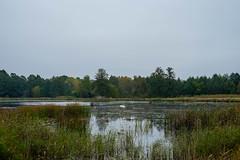 Bajoro (jaceek81) Tags: natura ary kunice krajobraz autumn jesie fujifilm fuji xt10
