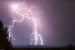 Quadruple coup de foudre (Prsage des Vents) Tags: orage foudre extranuageux clair impact arbre alex