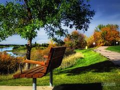 Walk along the lake (mrbillt6) Tags: northdakota jamestown reservoir lake landscape walk bench tree grass bush prairie plains outdoors