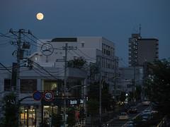 P1000298 (Jun.Ohashi) Tags: moon jp panasonic  lumix  gm1s  microfourthirds mft 43 lumixgvario35100mmf4056asphmegaois lumixgvario35100mm vario 35100mm f4056 asph megaois