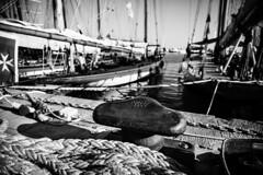 IMG_3081 (cristian.bailo) Tags: mare sea vele sail barche imperia regata storiche navi antiche liguria old camera kodak vintage fotocamera soffietto