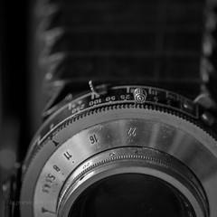 Photography (la posie des images) Tags: macromondays mydailyroutine laposiedesimages photography macro voitlander bessa 105mm camera