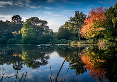 Autumn at Reaseheath (nds6346) Tags: reflections lake water tree trees pond autumn fall colour red gold orange cheshire nantwich college reaseheath nikon nikond5300 nikonphotography