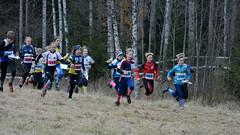 The start of Halikko-juoksu (Mrynummi, Salo, 20161022) (RainoL) Tags: 2016 201610 20161022 autumn fin finland geo:lat=6044845622 geo:lon=2307227612 geotagged halikko halikkojuoksu halikkokavlen halikkoviesti october orienteering orientering salo sport suunnistus varsinaissuomi mrynummi