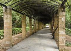 The Pergola Path (gliak00) Tags: athens greece nationalgardens park pergola plant tree athina atticaregion
