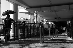 untitled (~kenlwc (time to rethink, will catch up slowly....) Tags: leicam9 leicam9p leica summaron35mm 35mm blackwhite monochrome starferry people light shadow hongkong hk kenlwc kenleung