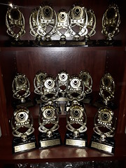 OWTFF Award 2016 Trophies