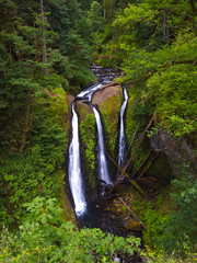 Triple Falls Green (RobertCross1 (off and on)) Tags: 1250mmf3563mzuiko cascaderange cascades columbiarivergorge em5 hoodriver longexposure multnomah nationalscenicarea omd or olympus oneontacreek oregon pacificnorthwest triplefalls cascade creek ferns forest green hike landscape moss nature portrait stream trees water waterfall