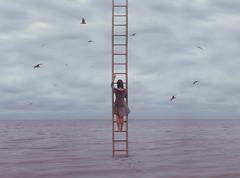 (lauren zaknoun) Tags: surreal surrealphotography surrealism conceptual conceptualphotography fairytale ocean nature dark darkart darkphotography girl newengland bird sky rain storm