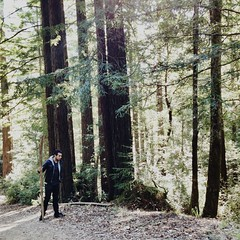 Surrounded by the sequoia trees.  #sequoia #halfmoonbay (Whyisdaskyblue) Tags: sequoia halfmoonbay