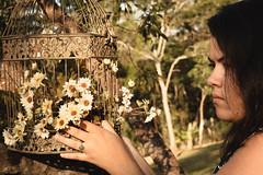 (MaiDart) Tags: margaridas retrato mulher natureza gaiola