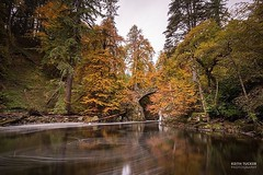 Autumn colours at the hermitage #scotland #perthshire #autumn