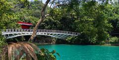 IMG_0020.jpg (Idiot frog) Tags: sunmoonlake bridge lake water nantou 5d2 green canon taiwan 5dmk2 eos éæ± é èºç£ç å°ç£ tw