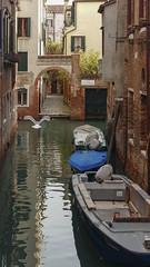Venezia (lucabovo) Tags: venezia venice laguna acqua nikon gondola barca voga vogare