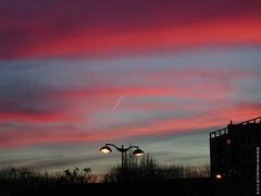Changement d'éclairage (Fontenay-sous-Bois - Officiel) Tags: fontenay fontenaysousbois regionparisienne valdemarne iledefrance 94 94120 paris rose sky sunset lampadaire