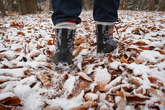 Warning (Bert CR) Tags: firstsnow latefall weatherwarning snow snowsquall wind threatening squall walking hiking