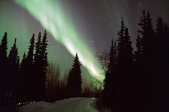 Neon Lighting (film) (northern_nights) Tags: northernlights aurora auroraborealis film nikonfm2 nikkor35mmf14 fairbanks alaska sky stars 100v10f