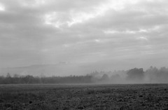 Play Misty for Me (Jonathan Carr) Tags: mist field landscape rural northeast black white bw 6x9 monochrome toyo