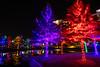Tiny Isle (MikeyBNguyen) Tags: addison vitruvianpark vitruvianlights vsco vscofilm nightphotography texas unitedstates us christmaslights christmastree christmastrees christmas longexposure
