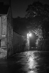 gaslight (Janeish) Tags: mist autumn monochrome fougres 2016