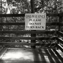 Do Not Turn Back (oscar the fish) Tags: ricohgrdii ricohgrd grdii grd2 ricohgrd2