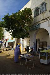 Under An Orange tree (T Ξ Ξ J Ξ) Tags: morocco chefchaouen sefasawan d750 nikkor teeje nikon2470mmf28 blue city market