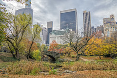 Central Park (JMS2) Tags: nyc autumn centralpark urban cityscape skyscrapers park fall manhattan