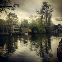 The Thames at Marlow (maistora) Tags: uk trees england sky brown house painterly color colour reflection green nature water beautiful beauty mobile thames clouds reflections river dark landscape island grey boat duck branch gloomy phone cloudy britain lock sony cellphone bank calm smartphone filter earthy serene gloom ripples process pastoral effect postprocess android marlow edit waterway palette pictorial subtle subdued riverscape 12mp maistora instagram xperias