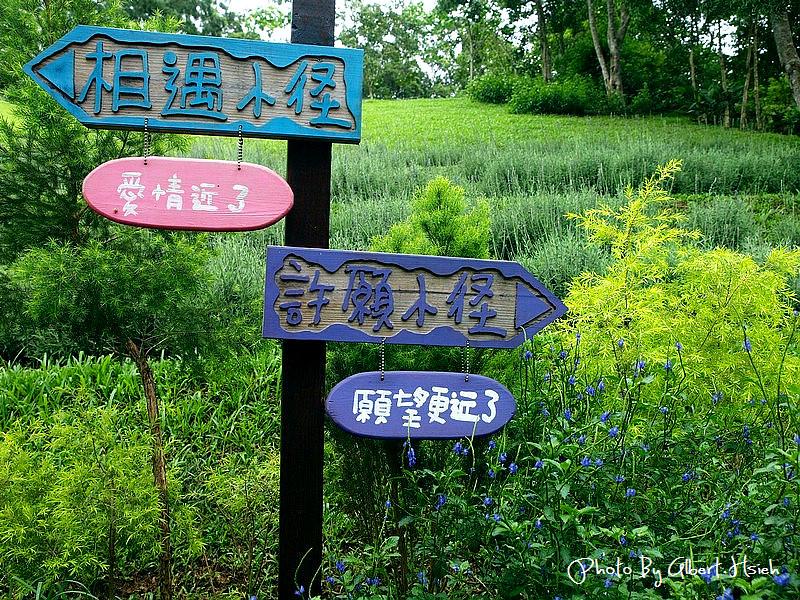 【景觀】苗栗頭屋.薰衣草森林(充滿愛情與幸福的地方)