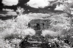Dismatled Railway (Saturated Imagery) Tags: blackandwhite film 35mm ir iso400 infrared riveraire kodakhie castleford fairburnings aireandcaldernavigation prakticatl5b