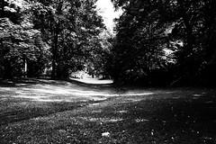 im schloßgarten (vaquey) Tags: karlsruhe sooc schlosgarten