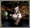 A lavandeira no rio (José Luis López Vázquez) Tags: santiago de nikon do camino jose luis monte lopez lugo rei santo ano melide gozo sixto palas vazquez sarria camiño sisto portomarín arzúa ourol s8000 orol