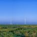 Paulding Wind Farm Pano