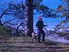 WorldsEnd11-20-2011022