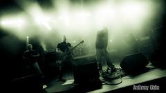 Pitbulls in the Nursery # photos @ Festival M FEST, Rouziers de Touraine | 7 septembre 2013