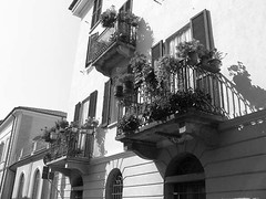 Barsottini_Emanuele_07