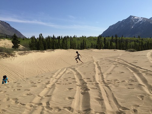 Carcross dunes