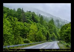Mountain Mist (travelphotographer2003) Tags: usa spring westvirginia relaxation exploration idyllic appalachia freshness appalachianmountains purity tranquilscene alleghenymountains beautyinnature route150 pocahontascounty nationalscenicbyway mountainmist highlandscenichighway