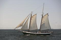 CN4A1118 - Gloucester Schooners Race (Syed HJ) Tags: canoneos5dmarkiii canoneos5diii canon5diii canon 5d 5diii canonef70200mmf28lisiiusm canonef70200mmf28lisii canonef70200mmf28l canonef70200mm canon70200mm 70200mm schoonersfestival schoonersfestivalgloucesterma schooners boats sailboats gloucesterma gloucester ma