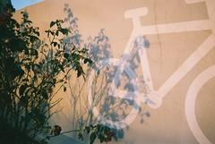 September 21th 2016 (Amalie Remond Spens) Tags: danish disposable camera denmark danmark amalie remond spens filmisnotdead film is dead analog analoug engangs kamera engangskamera 35mm københavn dmjx skygger shadows efterår nordvest