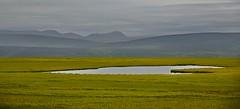 _DSC3497 (andoni.guridi) Tags: myvatn lago lake iceland islandia summer verano uda agosto august paisaje landscape
