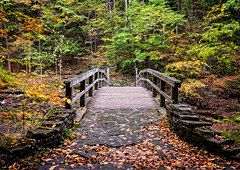 Treman State Park - Wooden Bridge in Fall (agladshtein) Tags: colors sony2470mmf28g cny landscape season nature newyork fall ny trees centralnewyork tompkinscounty tremanstatepark waterfall gorges forest scenic sonya7r2 outdoors luciferfalls traveldestination beautyinnature hiking ithaca sunrise dawn bridge wood